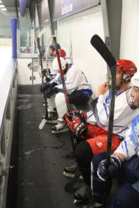 Silverbacks Team Bench